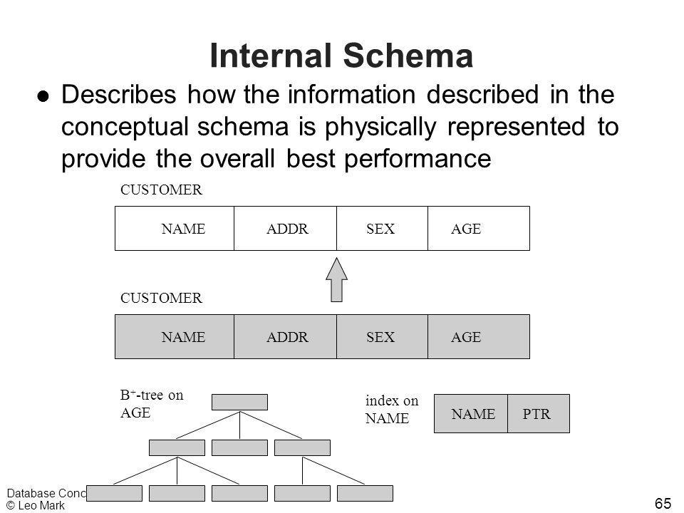 65 Database Concepts © Leo Mark Internal Schema l Describes how the information described in the conceptual schema is physically represented to provid
