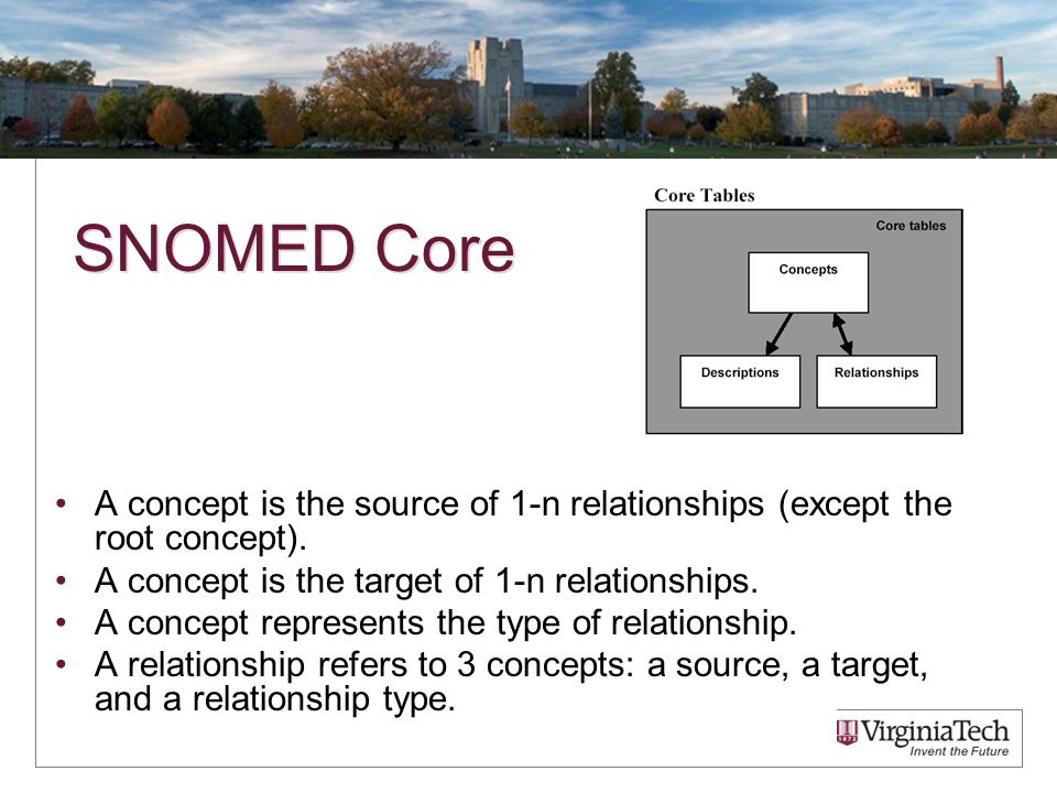 SNOMED Core A concept is the source of 1-n relationships (except the root concept).