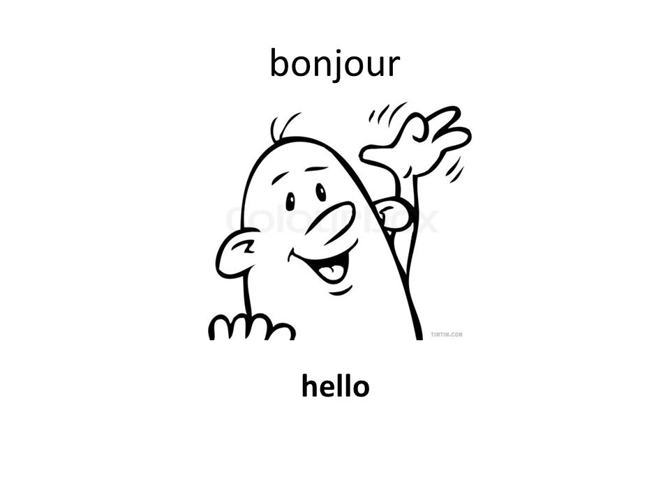 bonjour hello