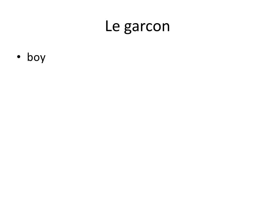 Le garcon boy
