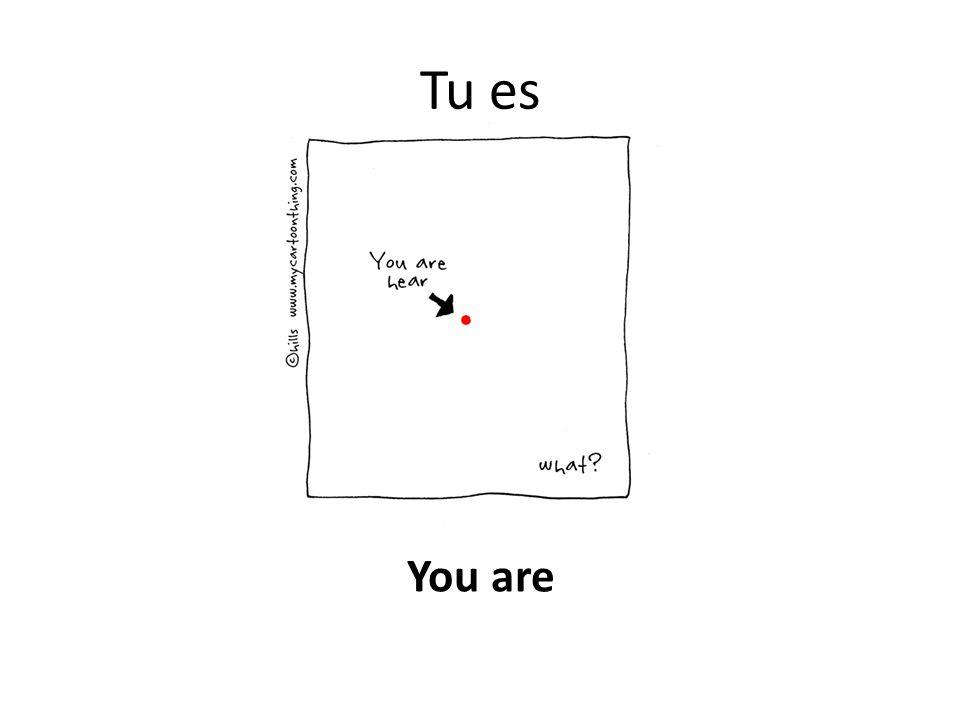 Tu es You are