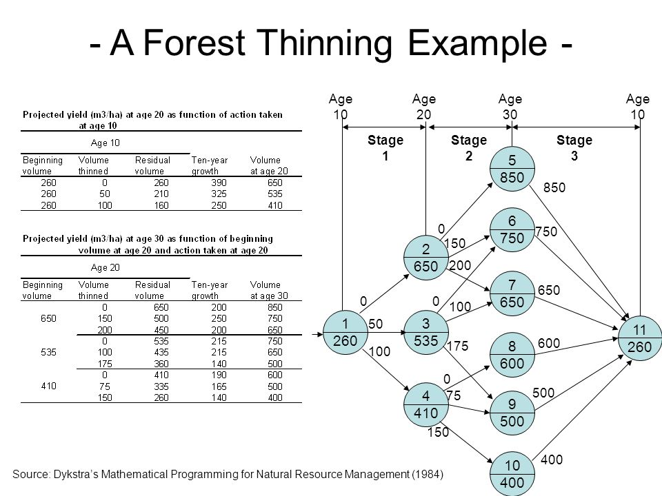 - A Forest Thinning Example - 1 260 2 650 3 535 4 410 5 850 6 750 7 650 8 600 9 500 10 400 11 260 0 50 100 0 150 200 850 750 650 600 500 400 0 0 100 175 150 75 Stage 1 Stage 2 Stage 3 Age 10 Age 20 Age 30 Age 10 Source: Dykstra's Mathematical Programming for Natural Resource Management (1984)
