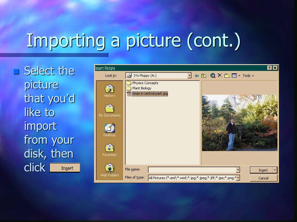 Importing a picture (cont.) n Select the picture that you'd like to import from your disk, then click