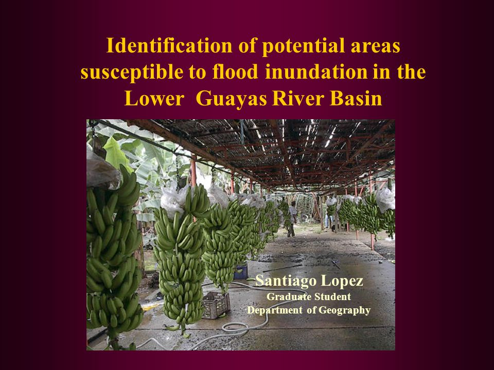 Identification of potential areas susceptible to flood inundation in the Lower Guayas River Basin Santiago Lopez Graduate Student Department of Geogra