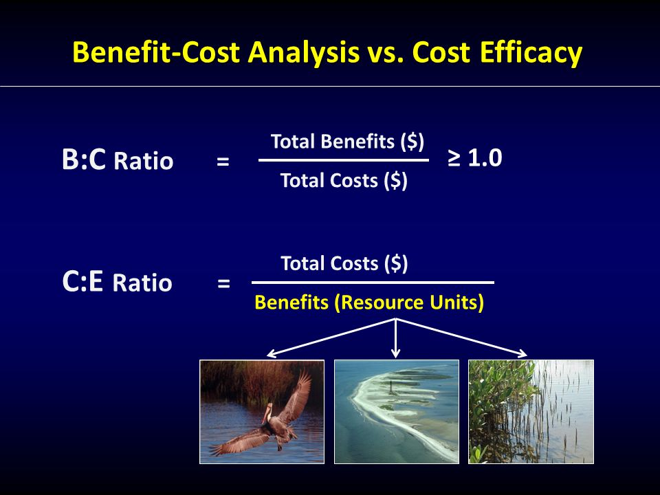 Results and Conclusions: Marsh Creation Tradeoff: Does the risk reduction by moving benefits up in time outweigh the potentially higher costs of this technology.