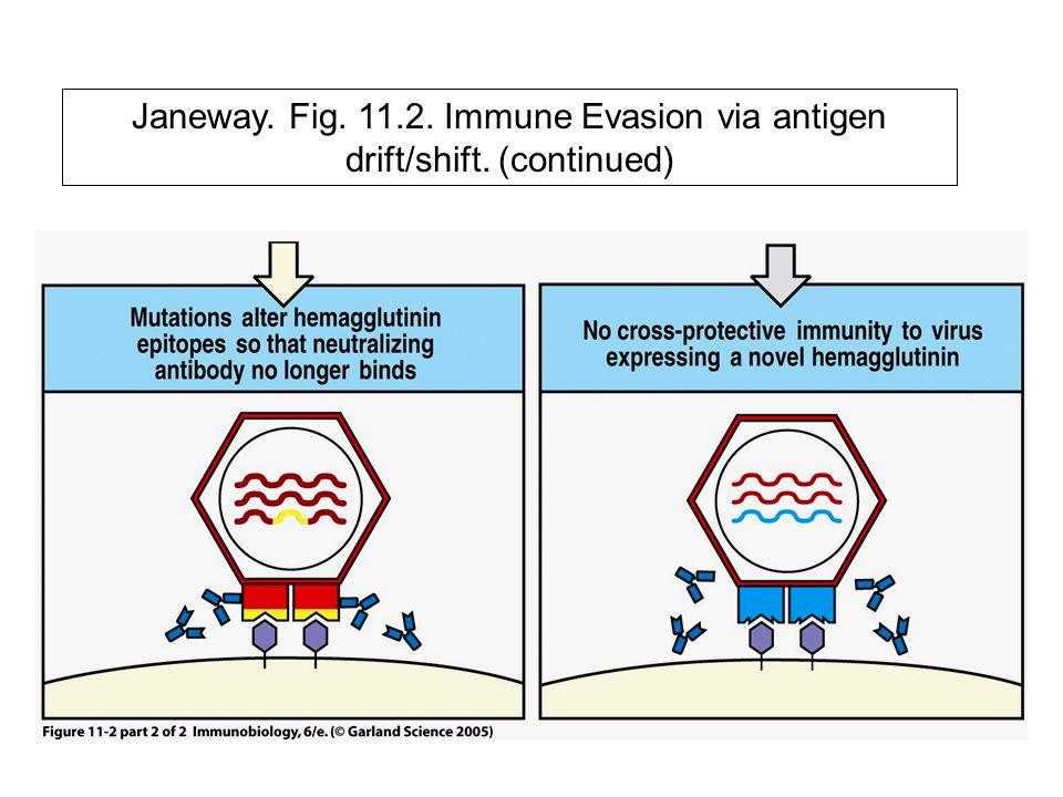 Janeway. Fig. 11.2. Immune Evasion via antigen drift/shift. (continued)
