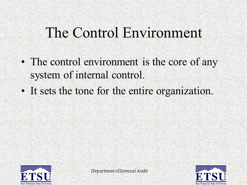 Department of Internal Audit The Control Environment The control environment is made up of –The ethics and integrity of the administration and employees of the university.