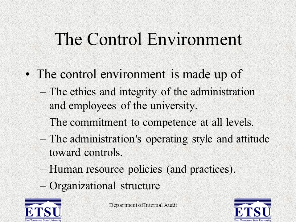 Department of Internal Audit Risk Assessment Risk assessment is the evaluation to determine those areas and functions within the university and each department that have risk of errors, noncompliance, and fraud.