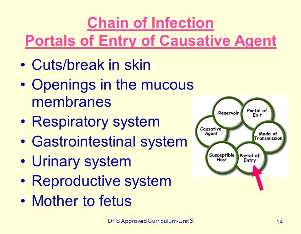 DFS Approved Curriculum-Unit 3 14 Chain of Infection Portals of Entry of Causative Agent Cuts/break in skin Openings in the mucous membranes Respirato