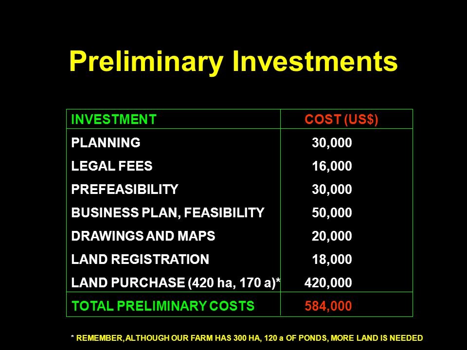 Preliminary Investments INVESTMENTCOST (US$) PLANNING 30,000 LEGAL FEES 16,000 PREFEASIBILITY 30,000 BUSINESS PLAN, FEASIBILITY 50,000 DRAWINGS AND MA
