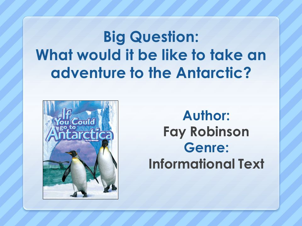 Today we will learn: Build Background Amazing Words Shared Reading: You Could Go to Antarctica Vocabulary Words Practice /e/ High-Frequency Words Student Reader: Ten Red Sleds Grammar: Telling Sentences Shared Writing Journal Writing Science: A Trip to Antarctica