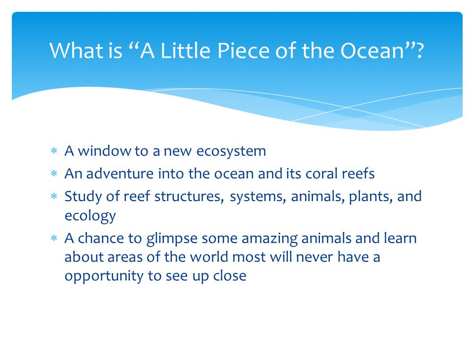  A window to a new ecosystem  An adventure into the ocean and its coral reefs  Study of reef structures, systems, animals, plants, and ecology  A