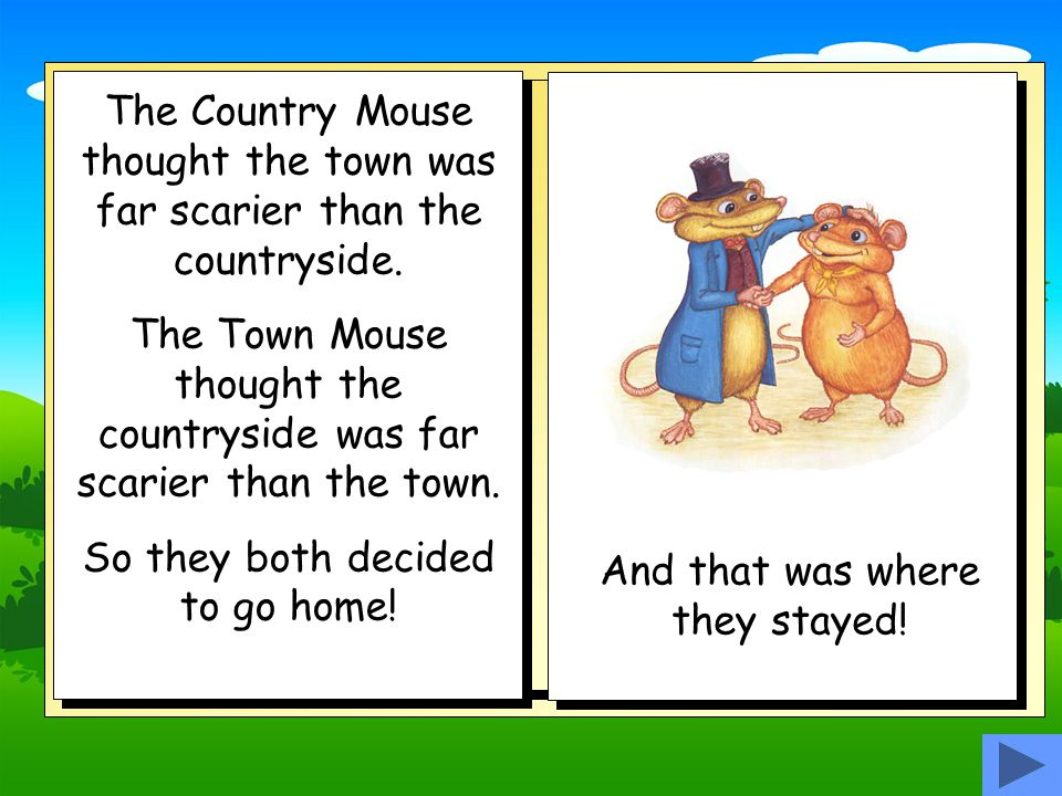 The Town Mouse and the Country Mouse spent the rest of the day walking.