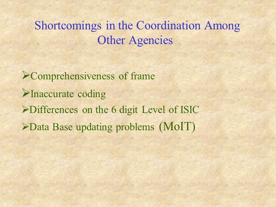 Shortcomings in the Coordination Among Other Agencies  Comprehensiveness of frame  Inaccurate coding  Differences on the 6 digit Level of ISIC  Data Base updating problems (MoIT)