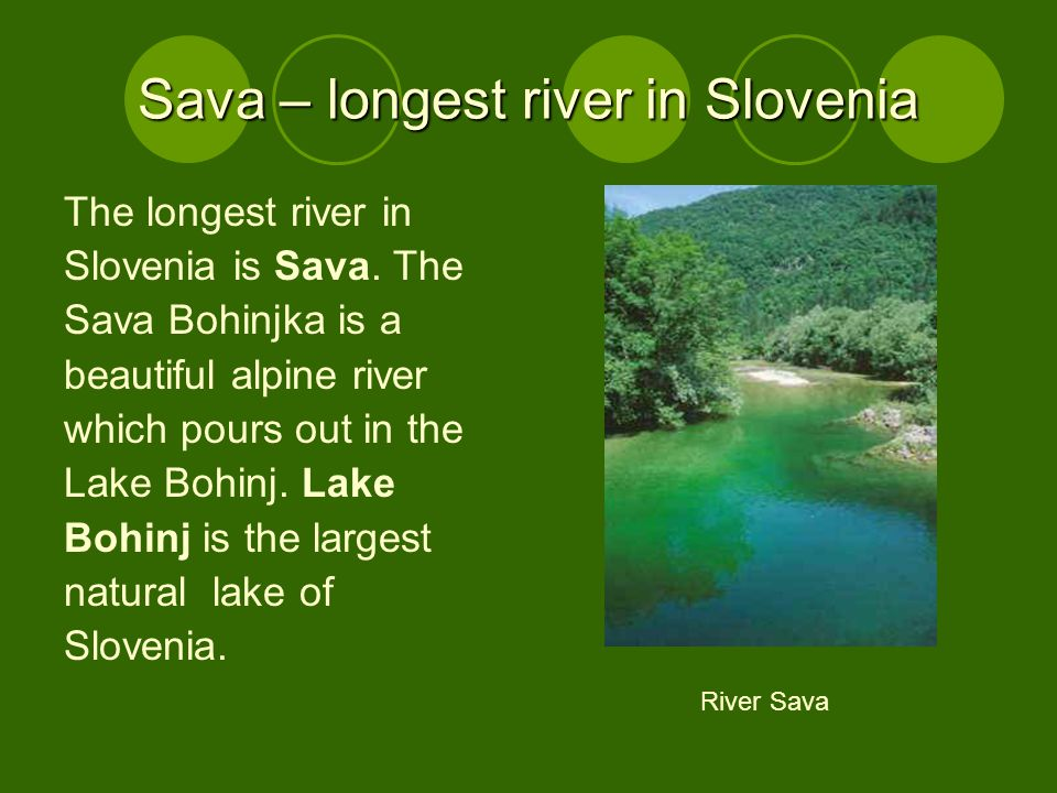 Sava – longest river in Slovenia The longest river in Slovenia is Sava.
