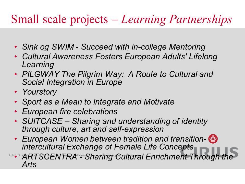 CIRIUS er en statslig styrelse for internationalisering af uddannelser og læringsmiljøer http://www.eu-art.hmf.ktu.lt/