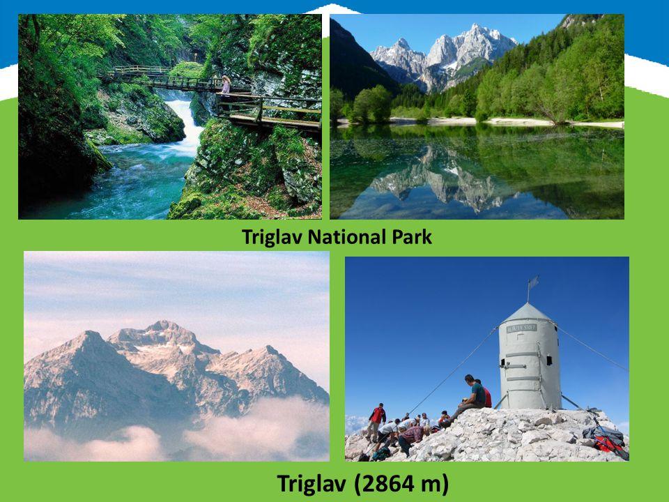 Logarska valley Velika planina