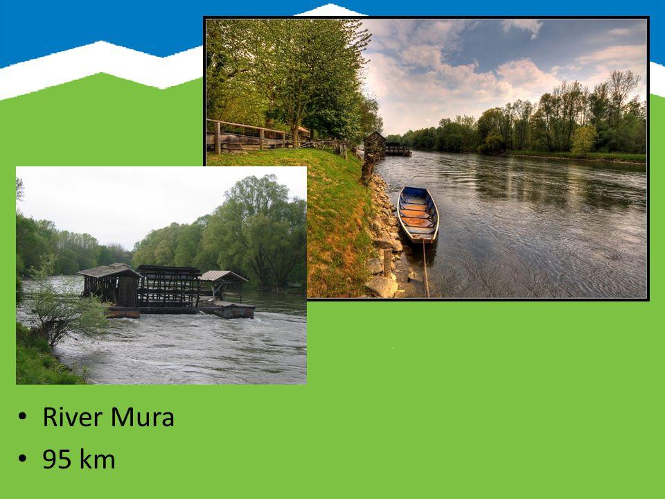 River Drava 142 km