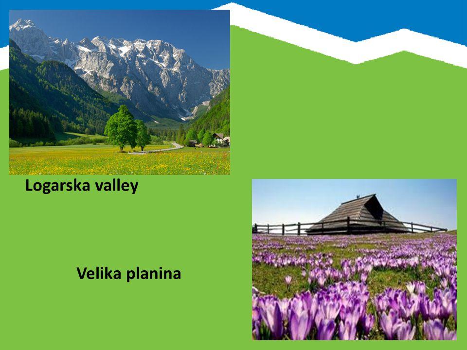 Saltpans of Sečovlje Postojna Cave