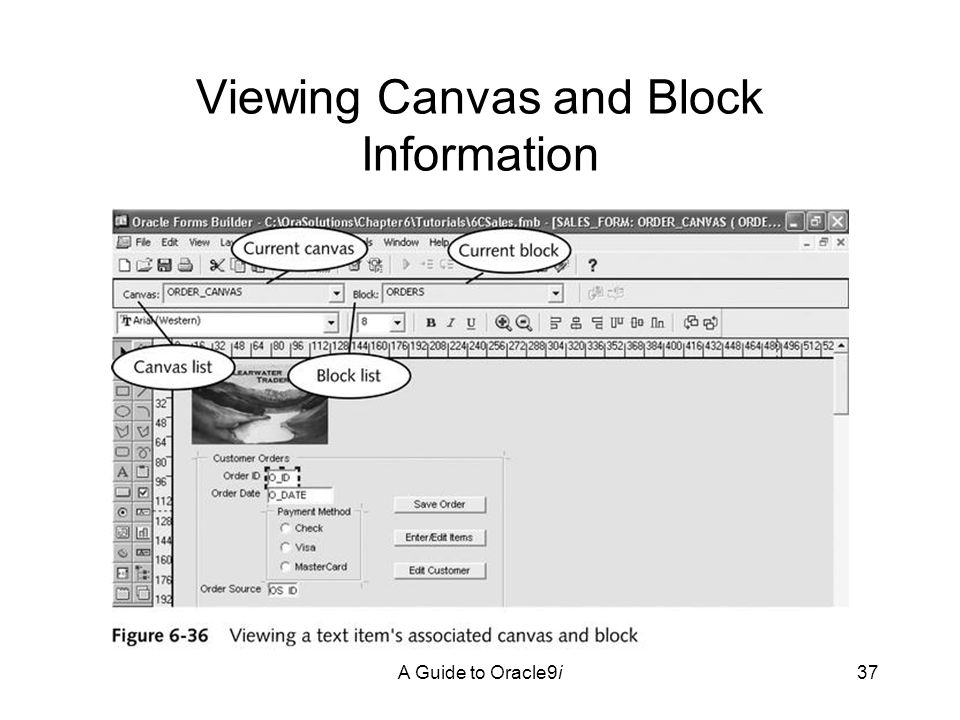 A Guide to Oracle9i37 Viewing Canvas and Block Information
