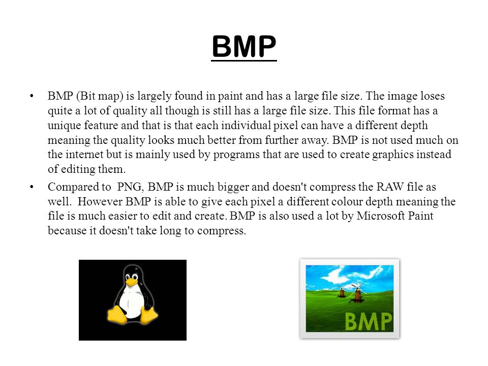 BMP BMP (Bit map) is largely found in paint and has a large file size. The image loses quite a lot of quality all though is still has a large file siz