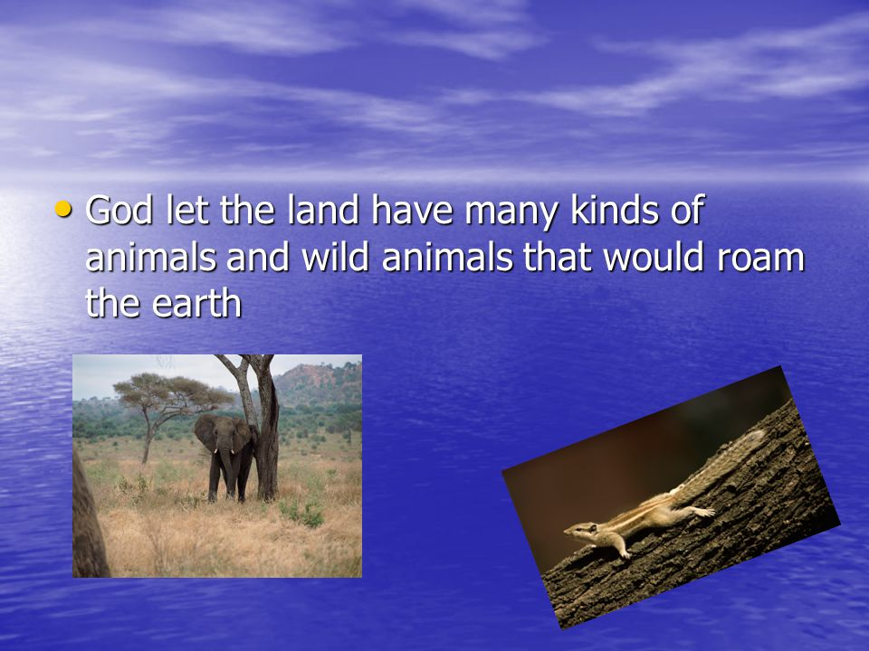 God let the land have many kinds of animals and wild animals that would roam the earth God let the land have many kinds of animals and wild animals th