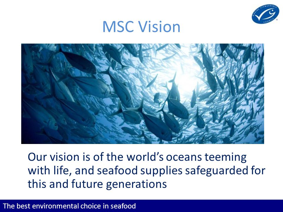 The best environmental choice in seafood Our vision is of the world's oceans teeming with life, and seafood supplies safeguarded for this and future generations MSC Vision Our vision is of the world's oceans teeming with life, and seafood supplies safeguarded for this and future generations