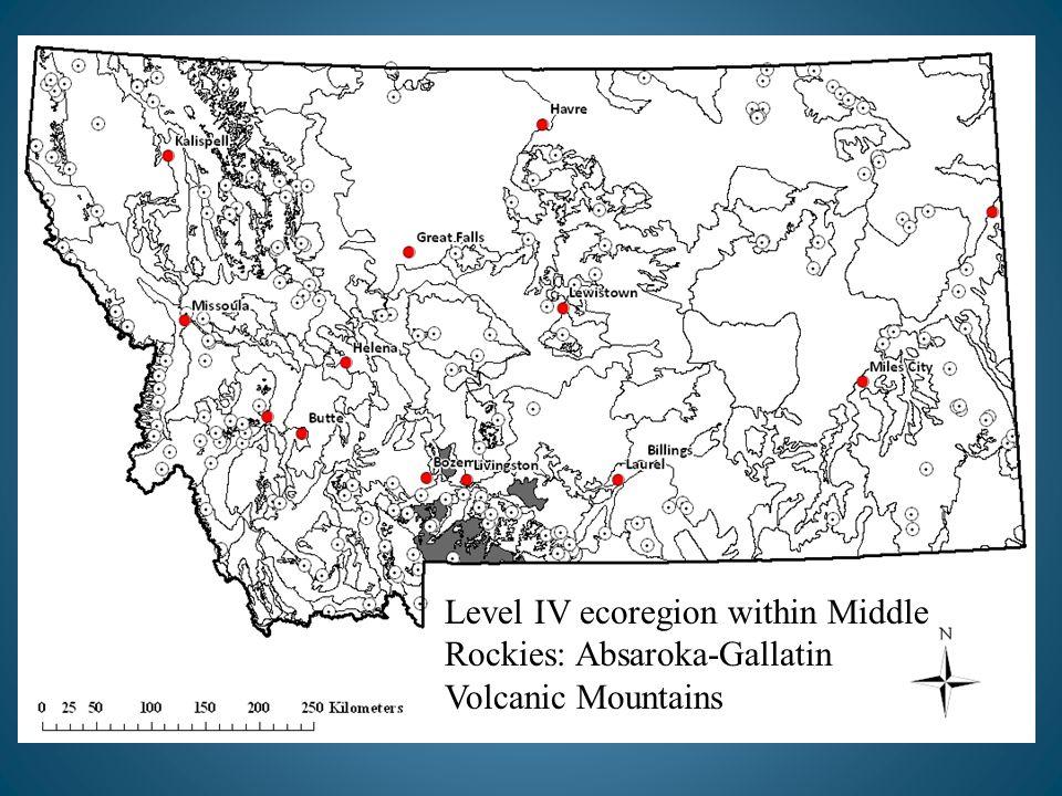 Level IV ecoregion within Middle Rockies: Absaroka-Gallatin Volcanic Mountains