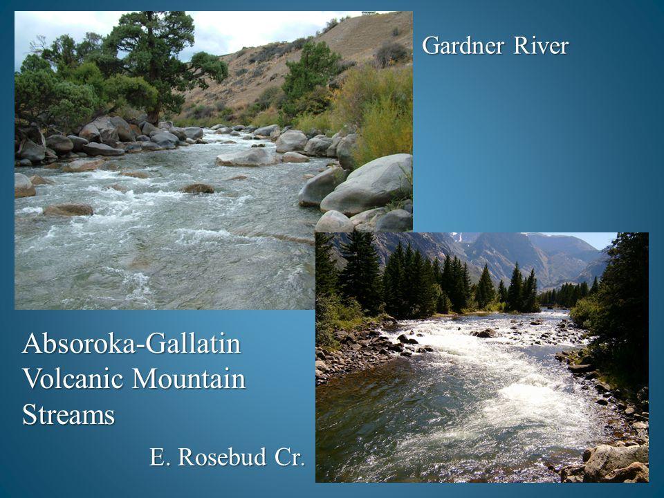 Absoroka-Gallatin Volcanic Mountain Streams E. Rosebud Cr. Gardner River