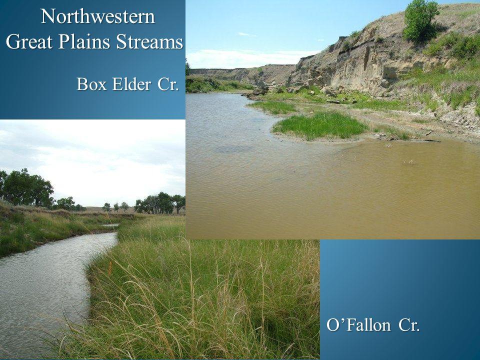 Northwestern Great Plains Streams Box Elder Cr. O'Fallon Cr.