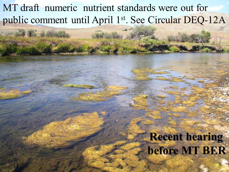 MT draft numeric nutrient standards were out for public comment until April 1 st.