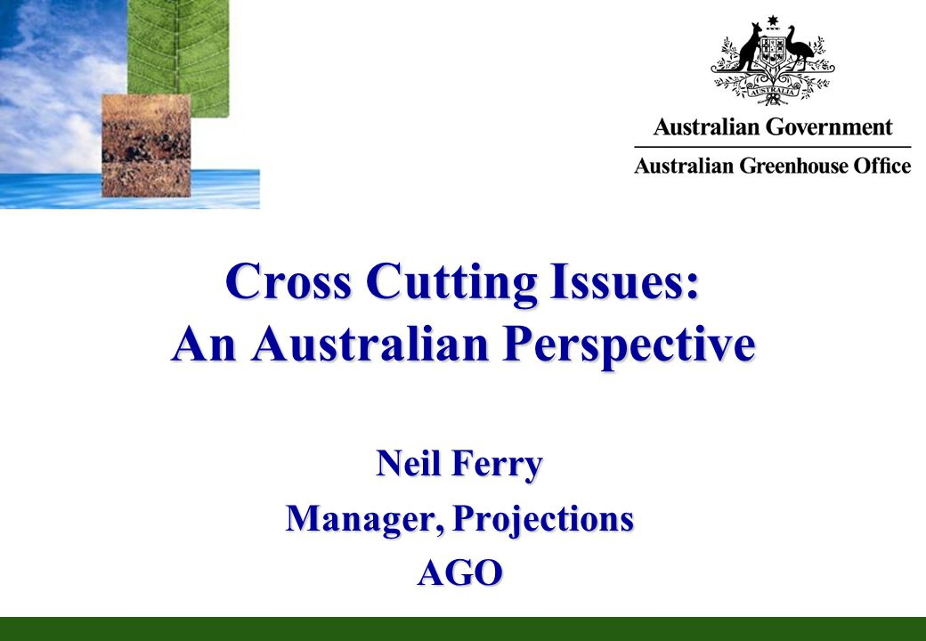 Cross Cutting Issues: An Australian Perspective Neil Ferry Manager, Projections AGO