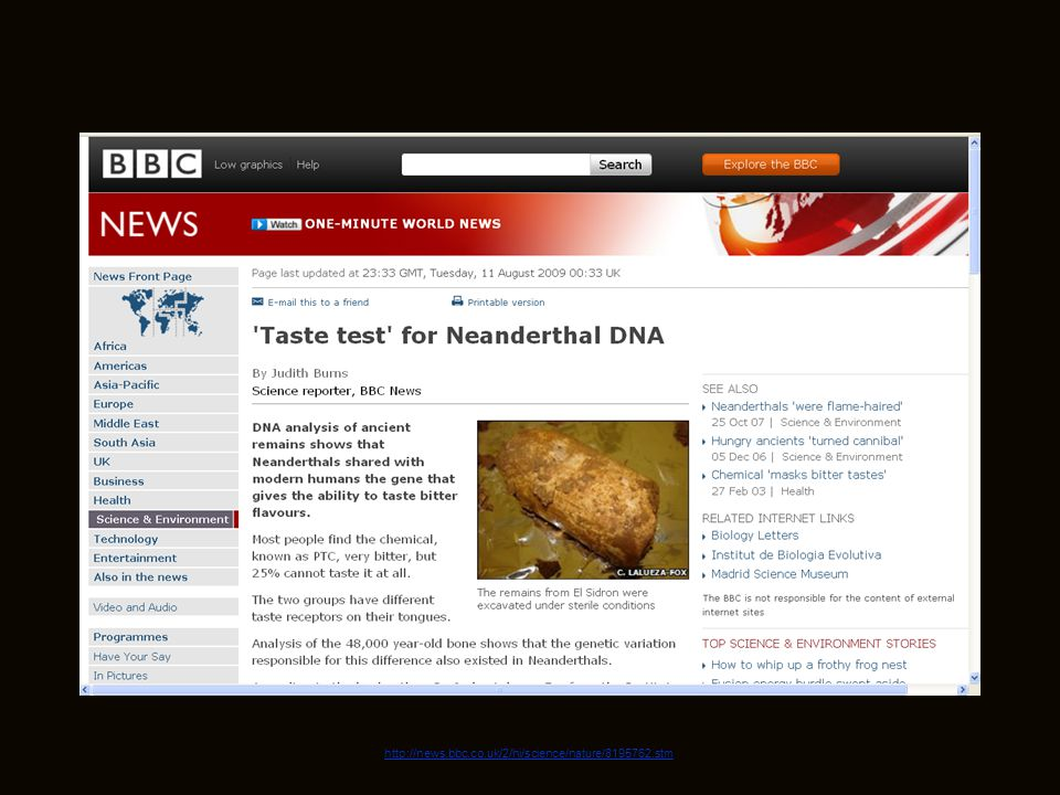 July 19, 2009 http://news.bbc.co.uk/2/hi/science/nature/8195762.stm