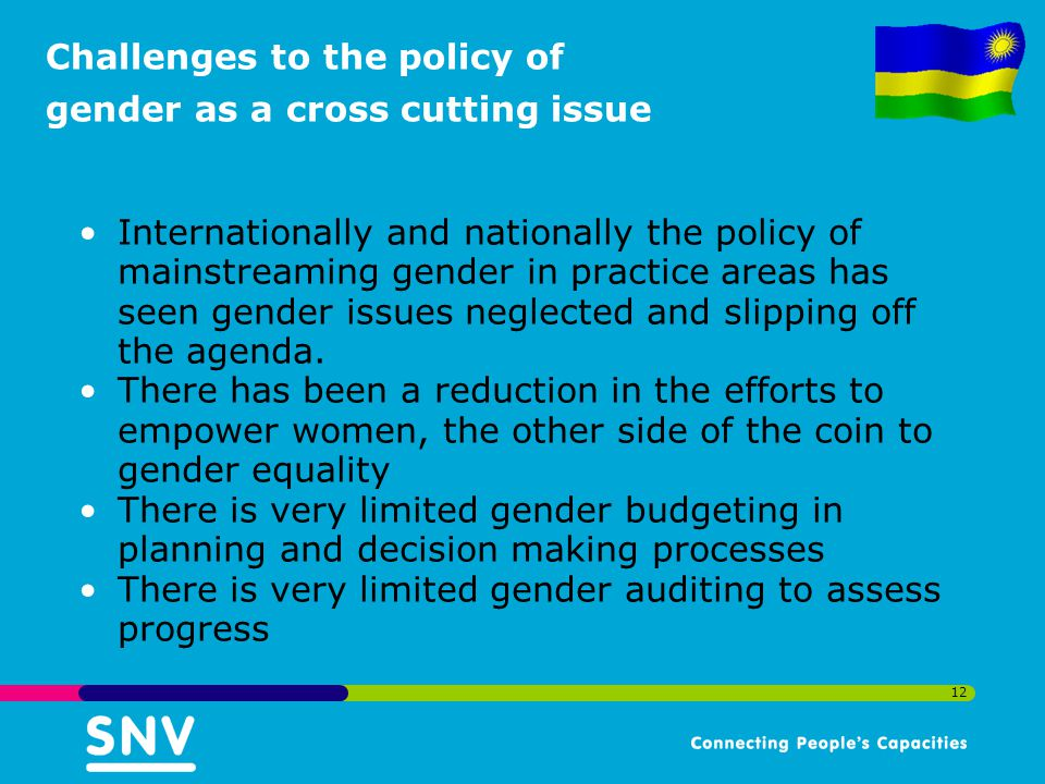 12 Challenges to the policy of gender as a cross cutting issue Internationally and nationally the policy of mainstreaming gender in practice areas has seen gender issues neglected and slipping off the agenda.