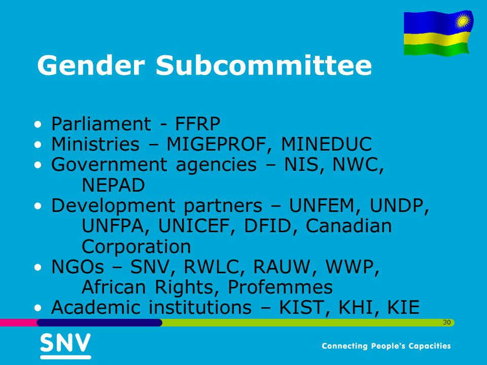 30 Gender Subcommittee Parliament - FFRP Ministries – MIGEPROF, MINEDUC Government agencies – NIS, NWC, NEPAD Development partners – UNFEM, UNDP, UNFPA, UNICEF, DFID, Canadian Corporation NGOs – SNV, RWLC, RAUW, WWP, African Rights, Profemmes Academic institutions – KIST, KHI, KIE