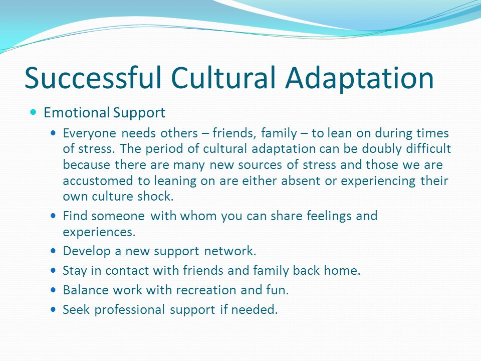 Successful Cultural Adaptation Social Skills Learn about the U.S.