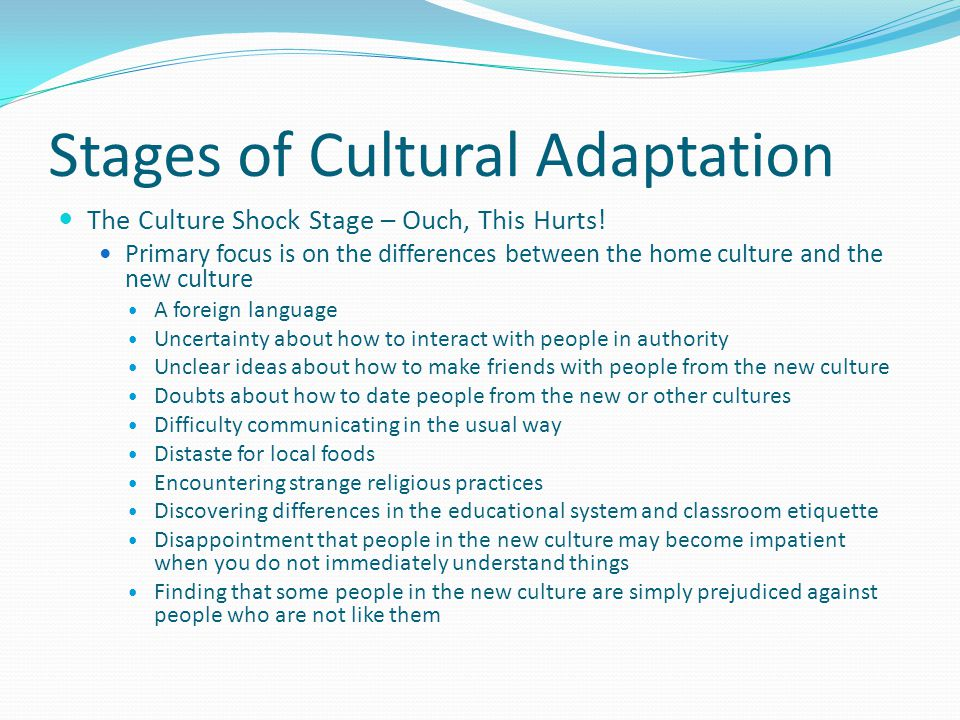 Stages of Cultural Adaptation The Honeymoon Stage – Let the Fun Begin Usually the first stage Experienced immediately upon arrival Everything seems exciting and new Focus is on the sense of success in being in a new culture There is a high degree of curiosity and interest in the novelty of the new surroundings There exists an appreciation for and anticipation of the opportunities to be found in the new culture Most people feel energetic, enthusiastic, and positive during this stage