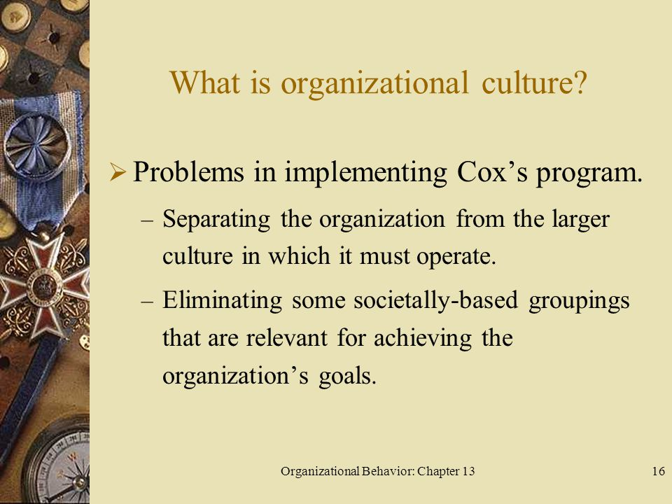 Organizational Behavior: Chapter 1316 What is organizational culture?  Problems in implementing Cox's program. – Separating the organization from the