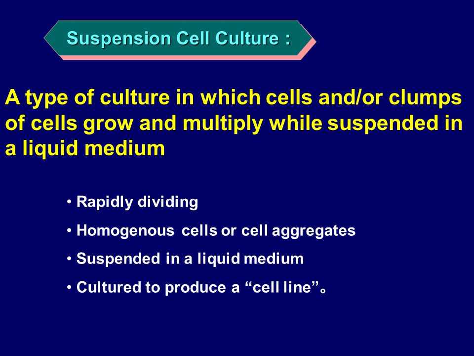 "Rapidly dividing Homogenous cells or cell aggregates Suspended in a liquid medium Cultured to produce a ""cell line"" 。 Suspension Cell Culture : A type"