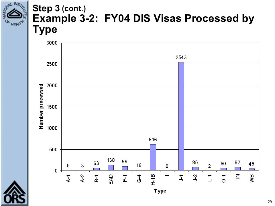 29 Step 3 (cont.) Example 3-2: FY04 DIS Visas Processed by Type