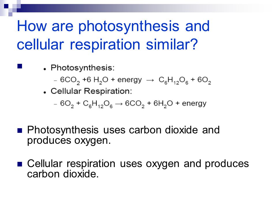 How are photosynthesis and cellular respiration similar? Photosynthesis uses carbon dioxide and produces oxygen. Cellular respiration uses oxygen and