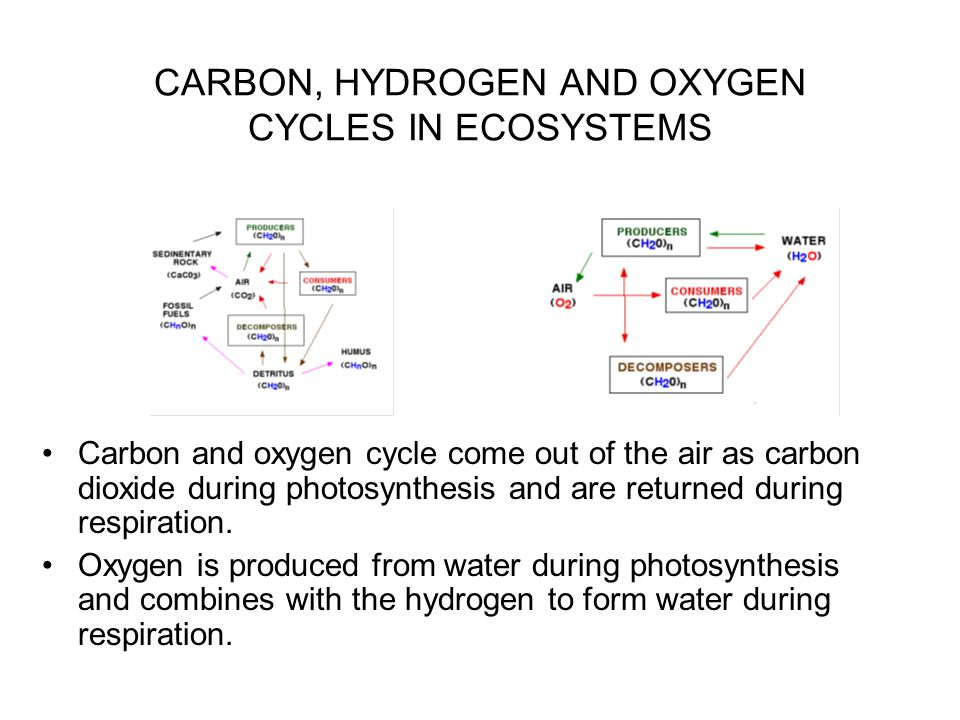 PHOSPHOROUS CYCLE IN ECOSYSTEMS Phosphorus, as phosphate (PO 4 -3 ), is an essential element of life.
