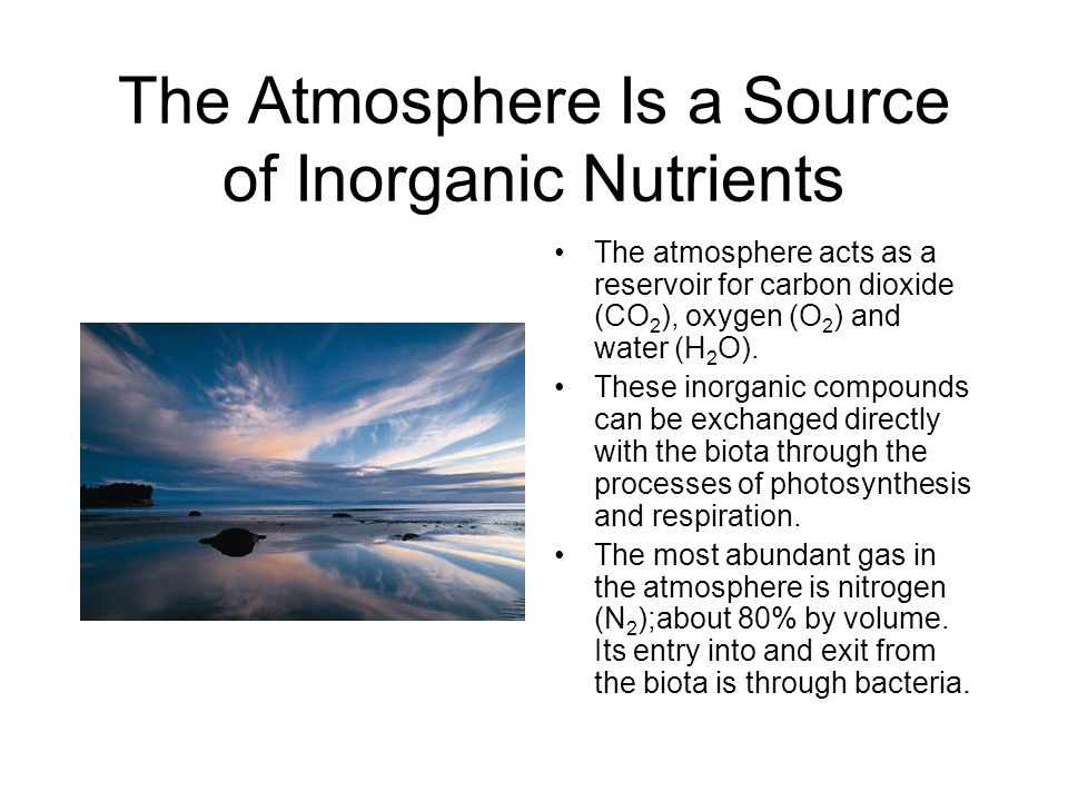 Some Processes By Which Nutrients Are Recycled Cycling within an ecosystem involves a number of processes.