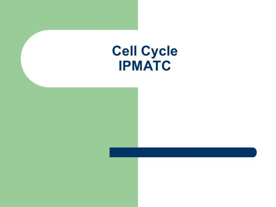 Cell Cycle IPMATC