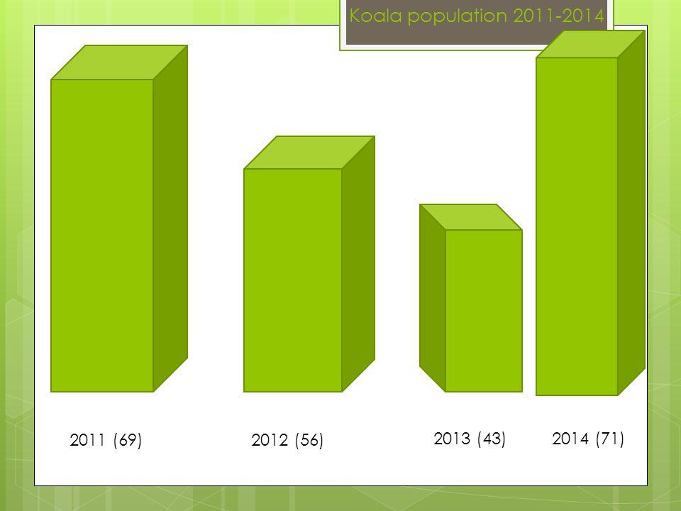 Koala population 2011-2014 2011 (69)2012 (56) 2013 (43)2014 (71)