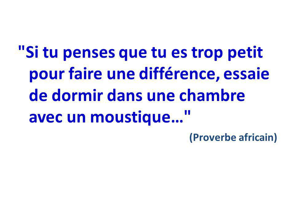 Si tu penses que tu es trop petit pour faire une différence, essaie de dormir dans une chambre avec un moustique… (Proverbe africain)