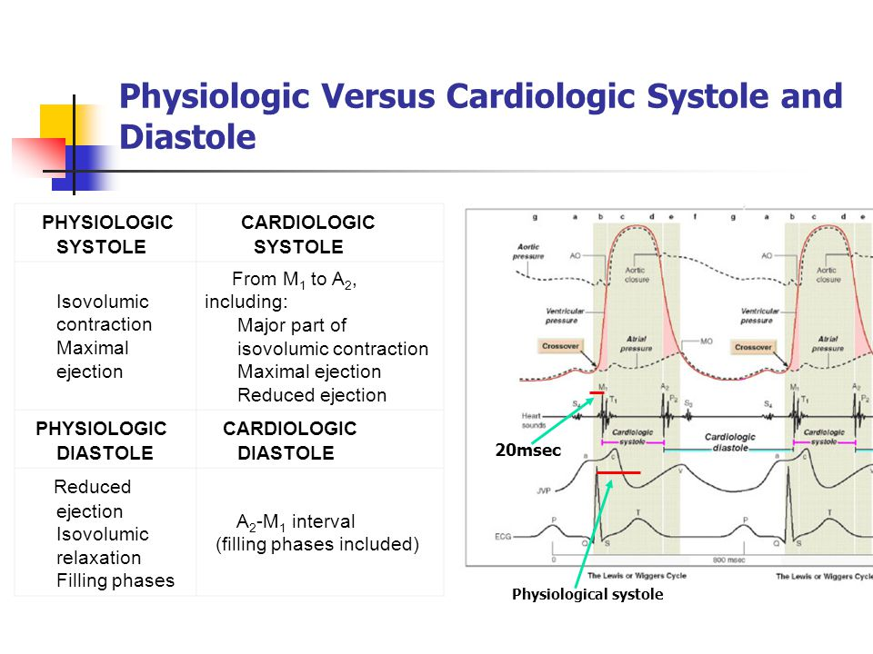 Physiologic Versus Cardiologic Systole and Diastole PHYSIOLOGIC SYSTOLE CARDIOLOGIC SYSTOLE Isovolumic contraction Maximal ejection From M 1 to A 2, i