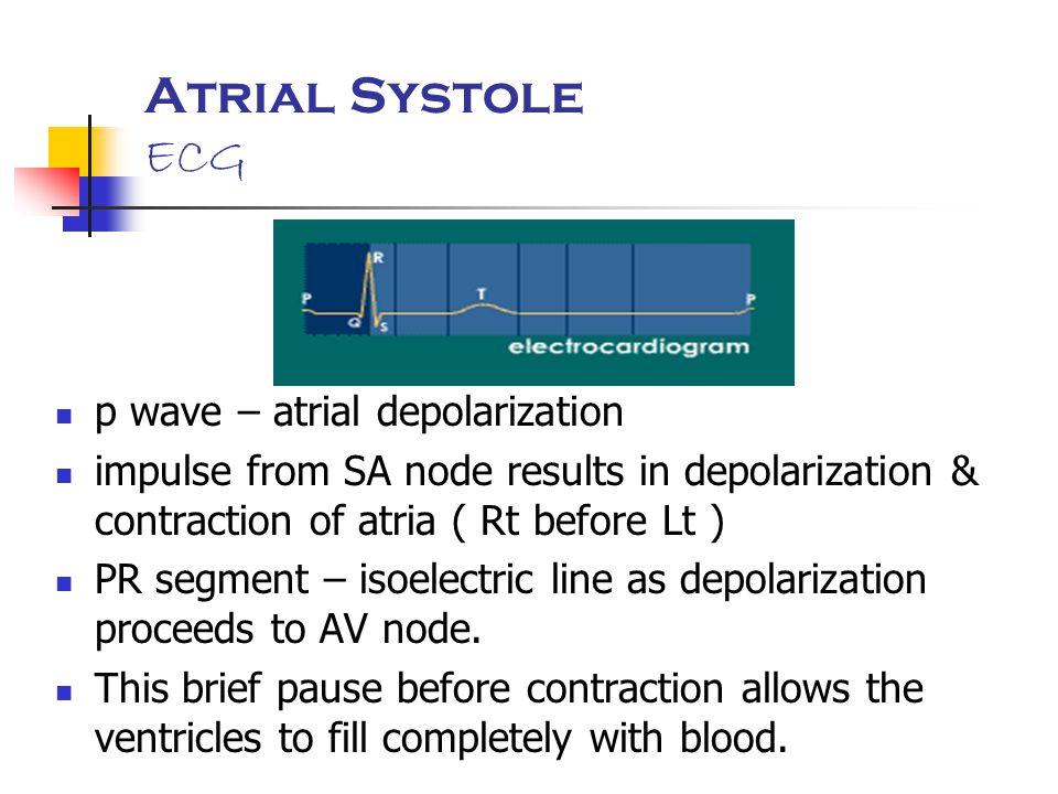 Atrial Systole ECG p wave – atrial depolarization impulse from SA node results in depolarization & contraction of atria ( Rt before Lt ) PR segment –