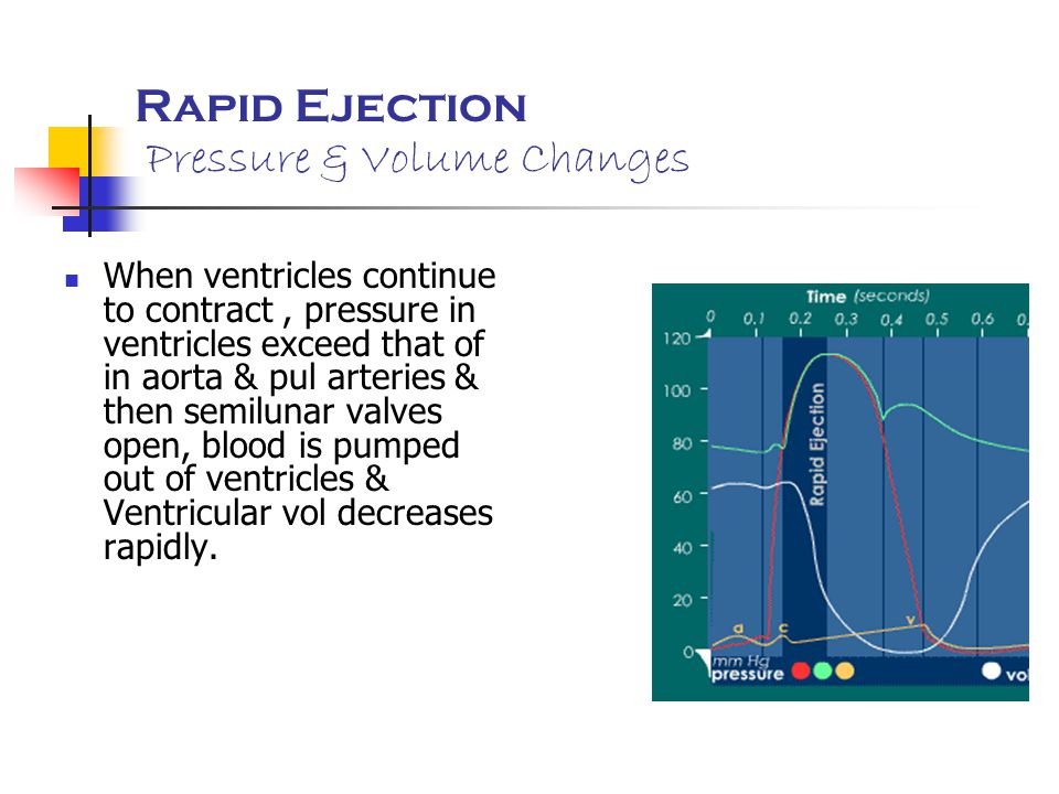 Rapid Ejection Pressure & Volume Changes When ventricles continue to contract, pressure in ventricles exceed that of in aorta & pul arteries & then se