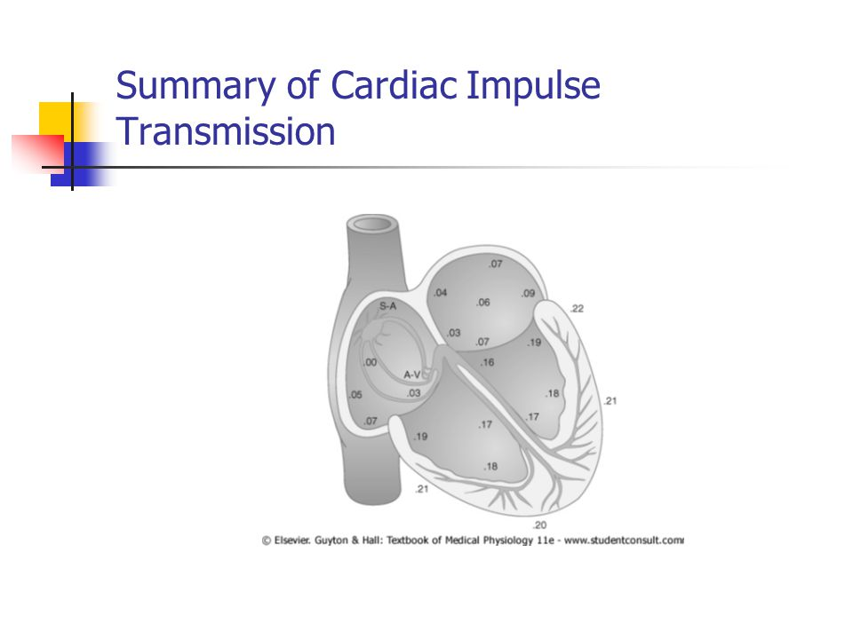 Ejection Aortic and Pulmonic Valves Open; AV Valves Remain Closed The Semilunar valves ( aortic, pulmonary ) open at the beginning of this phase.